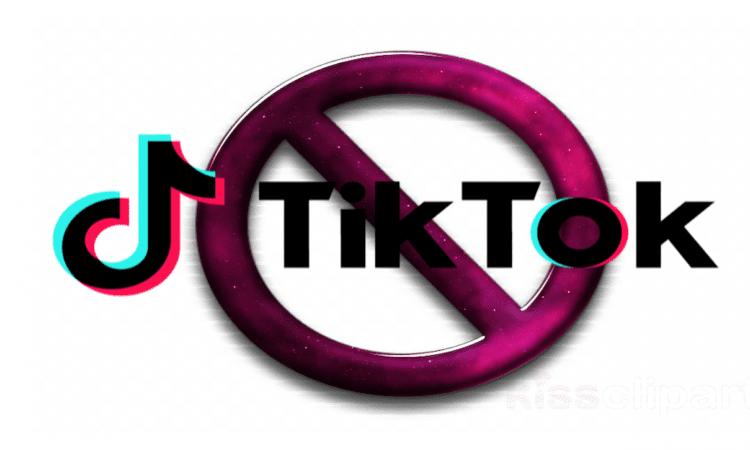 Il Garante Privacy contro Tik Tok